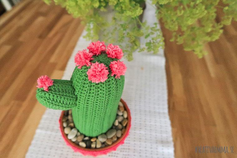 kaktus virkad i kruka på ekbord
