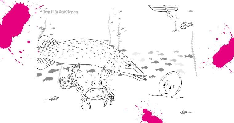 kraba, gädda och den lilla gråstenen målarbild