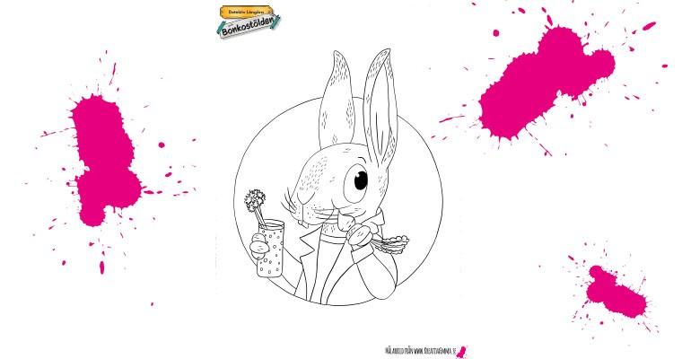 Kaninen Holger Detektiv långöra och bonkostölden